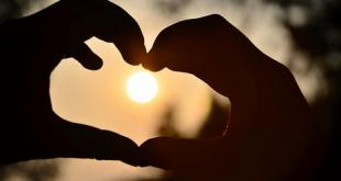 כולנו מחפשים אהבה
