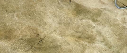 שמשונית
