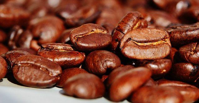 פולי קפה – חשוב לבחור כאלה שאוהבים