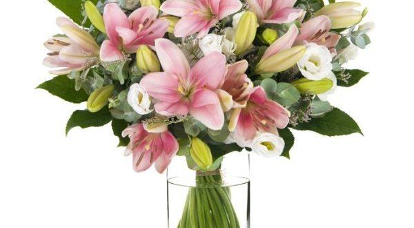 משלוחי פרחים במגוון ענק ובמחירים לכל כיס